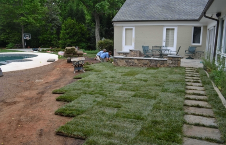 Patio Wall and Sod
